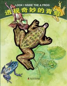 透视奇妙的青蛙