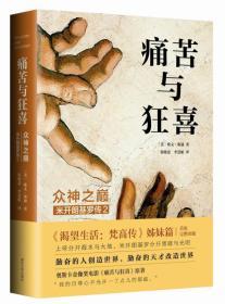 保证正版 痛苦与狂喜:众神之巅:米开朗基罗传2 〔美〕欧文斯通 南京大学出版社