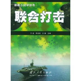 联合打击——新概念战争丛书