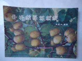 中华猕猴桃栽培-作者:朱鸿云
