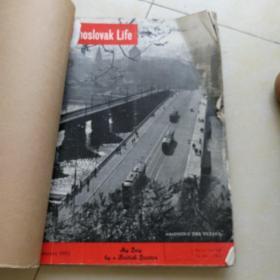 1952年英文画报12本,看图