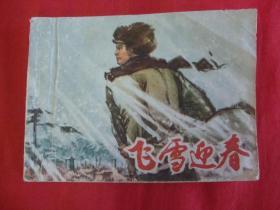飞雪迎春(上册)