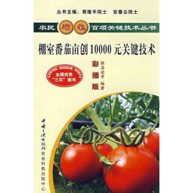 农民增收百项关键技术丛书:棚室番茄亩创10000元关键技术