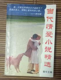 当代爱情小说精选