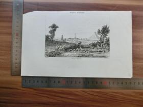 【现货 包邮】19世纪 铜/钢版画 单幅 PLAINE DE WATERLOO(货号 200545)