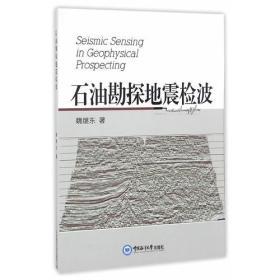 石油勘探地震检波