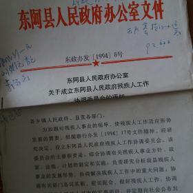 东阿县人民政府办公室文件