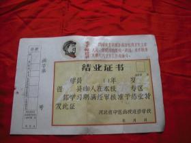 文革 结业证书(河北省中医院函授进修学校)空白  有毛主席语录.毛主席头像
