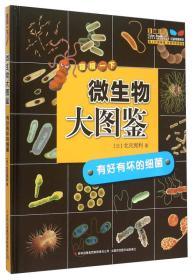 微生物大图鉴:有好有坏的细菌