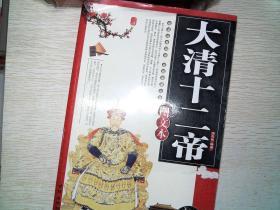 大清十二帝(图文本)(超值珍藏版) 书脊破损