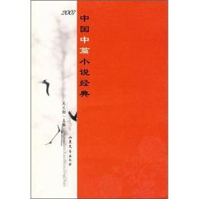 2007年中国中篇小说经典