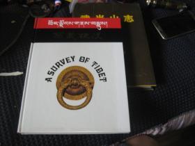 西藏概况:藏汉版(精装)