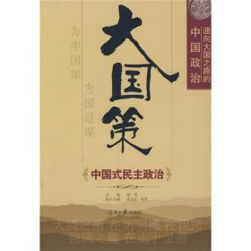 通向大国之路的中国政治:中国式民主政治