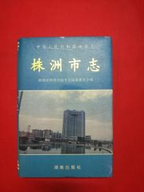 株洲市志(第九册)