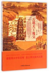 K (正版图书)(彩绘版)中华复兴之光:古塔天工瑰宝
