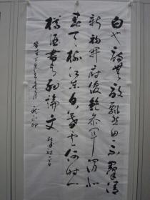 庞水印 行草 竖幅 137*70cm p505-107