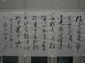 庞水印 行草 137*70cm 横幅 p505-109