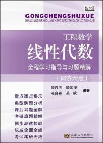 工程数学·线性代数:全程学习指导与习题精解(同济六版)