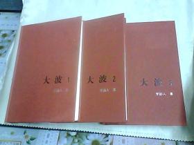 大波(1.2.3全)新中国60年长篇小说典藏(共3册)
