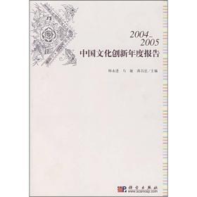 2004-2005中国文化创新年度报告