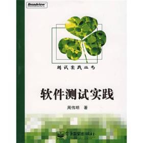 测试实践丛书:软件测试实践