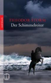 德国原版 德文 德语 小说 Der Schimmelreiter 白马骑士 施托姆