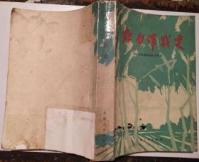 【处理】《虹南作战史》上海县《虹南作战史》写作组(带语录)