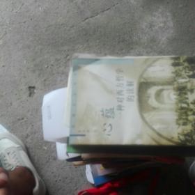 幼狮文化书系-心蕴-一种对西方哲学的读解