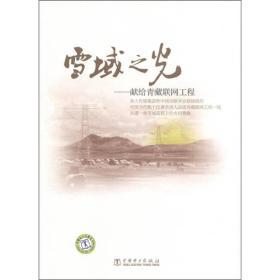 雪域之光:獻給青藏聯網工程
