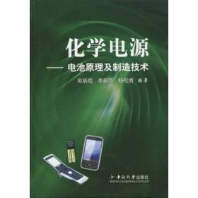 化学电源:电池原理及制造技术
