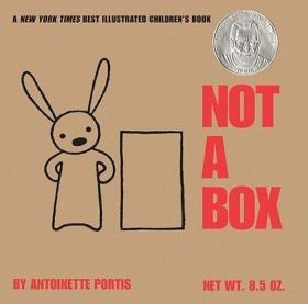 Not a Box 不只是个盒子,纸板书