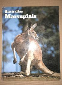 Australian Marsupials 精装  外文原版