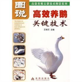 图说高效养鹅关键技术
