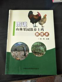 图说山林果园散养土鸡新技术