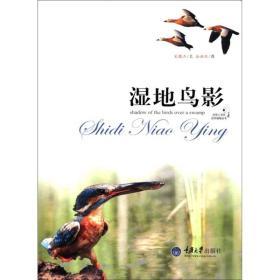 好奇心书系:湿地鸟影