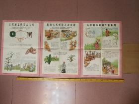 六十年代彩色农村宣传画