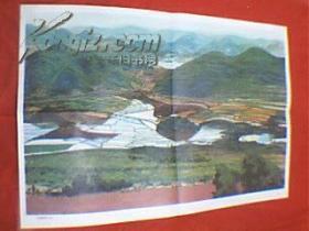 """老画家陆晓波创作的国画:云贵高原的""""坝子""""(此为对开画,宽76厘米,高52厘米;表现的是云贵高原的梯田;印刷品;原为教学挂图)"""