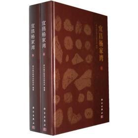 宜昌杨家湾(上下册)