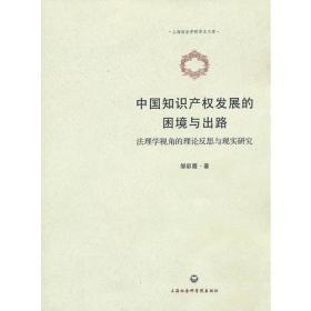 中国知识产权发展的困境与出路——法理学视角的理论反思与现实研究