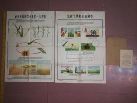 农村农业早期宣传画