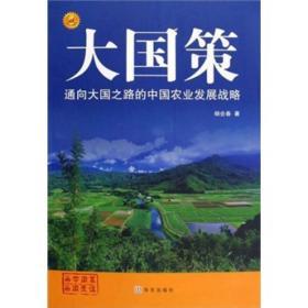 9787507528114-hs-大国策-通向大国之路的中国农业发展战略