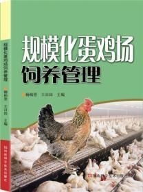 规模化蛋鸡场饲养管理
