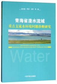 青海省湟水流域重点支流水环境问题诊断研究