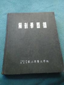 解剖学图谱(16开精装)1953年一版一印