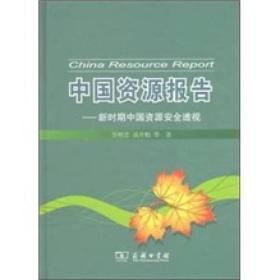 中国资源报告:新时期中国资源安全透视