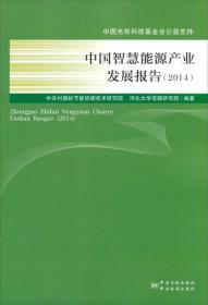 中国智慧能源产业发展报告2014