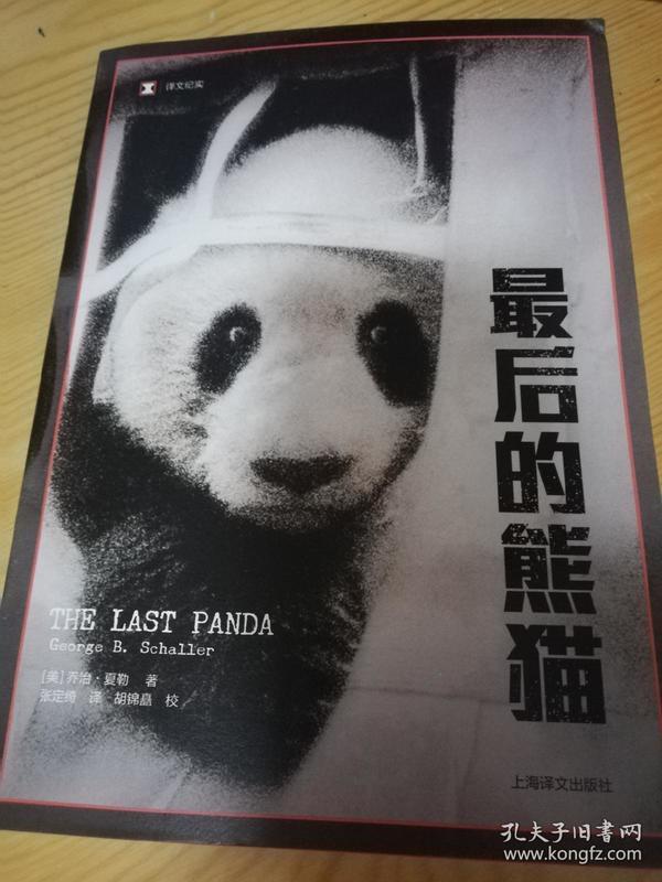 最后的熊猫
