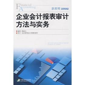 企业会计报表审计方法与实务
