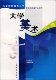 大学美术 非美术类各专业适用 王林 9787562108481 西南师范大学出版社