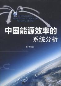 中国能源效率的系统分析